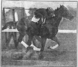 Press_and_Sun_Bulletin_Wed__Sep_1__1920_